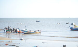 Mozambique's Fishermen Point to China as Fish Stocks Dwindle