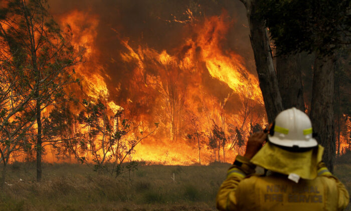 A firefighter on property protection watches the progress of bushfires in Old Bar, NSW, Saturday, Nov. 9, 2019. (AAP Image/Darren Pateman)