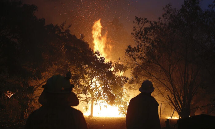 A fire near the Pacific Highway, north of Nabiac in the Mid North Coast region of NSW, on Nov. 12, 2019. (AAP Image/Darren Pateman)