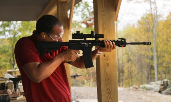 US Gun Sales Resume Climb Amid Democrats' Heightened Gun Control Talk