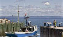 1.8 Million Items of Garbage Strewn Over Bay of Fundy Bottom, Study Estimates