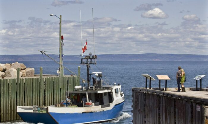 A fishing boat heads out into the Bay of Fundy from Hall's Harbour, N.S., in a file photo. (The Canadian Press/Andrew Vaughan)