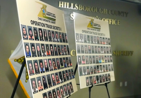 104 people were arrested by the Hillsborough County Sheriff's Office as part of an undercover operation. (Hillsborough County Sheriff's Office)