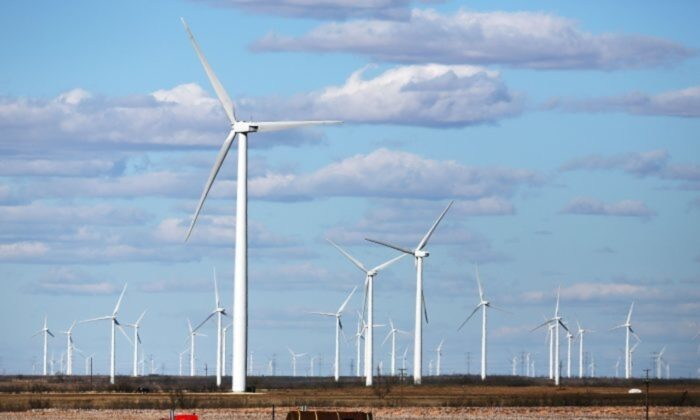 Wind turbines are shown on a wind farm in Colorado City, Texas, on Jan. 21, 2016. (Spencer Platt/Getty Images)