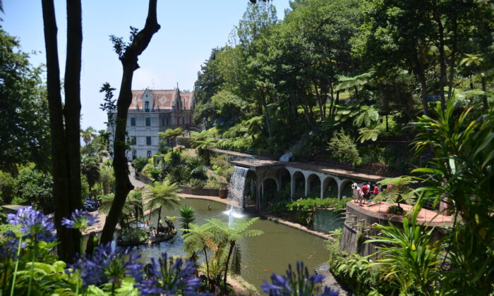 Monte Palace Madeira, a tropical garden with a huge exotic plant collection. (Francisco Correia)