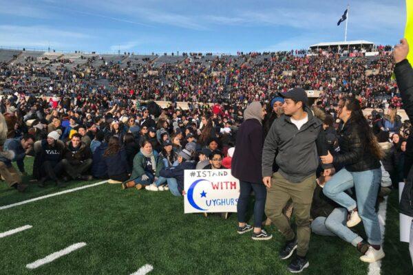 Harvard-Yale football Game