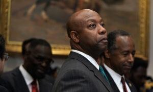 Trump 'Seems to be Innocent,' Senate Won't Convict Him If House Impeaches: Senator