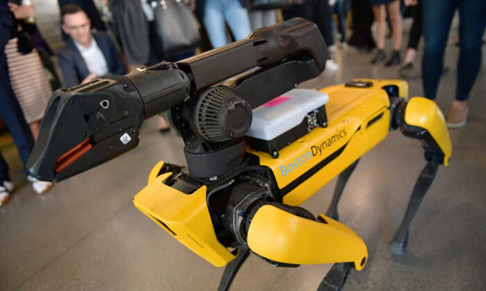 Boston Dynamics' SpotMini Robot on display at WIRED25 Summiton in San Francisco, Calif., on October 15, 2018. (Matt Winkelmeyer/Getty Images for WIRED25  )
