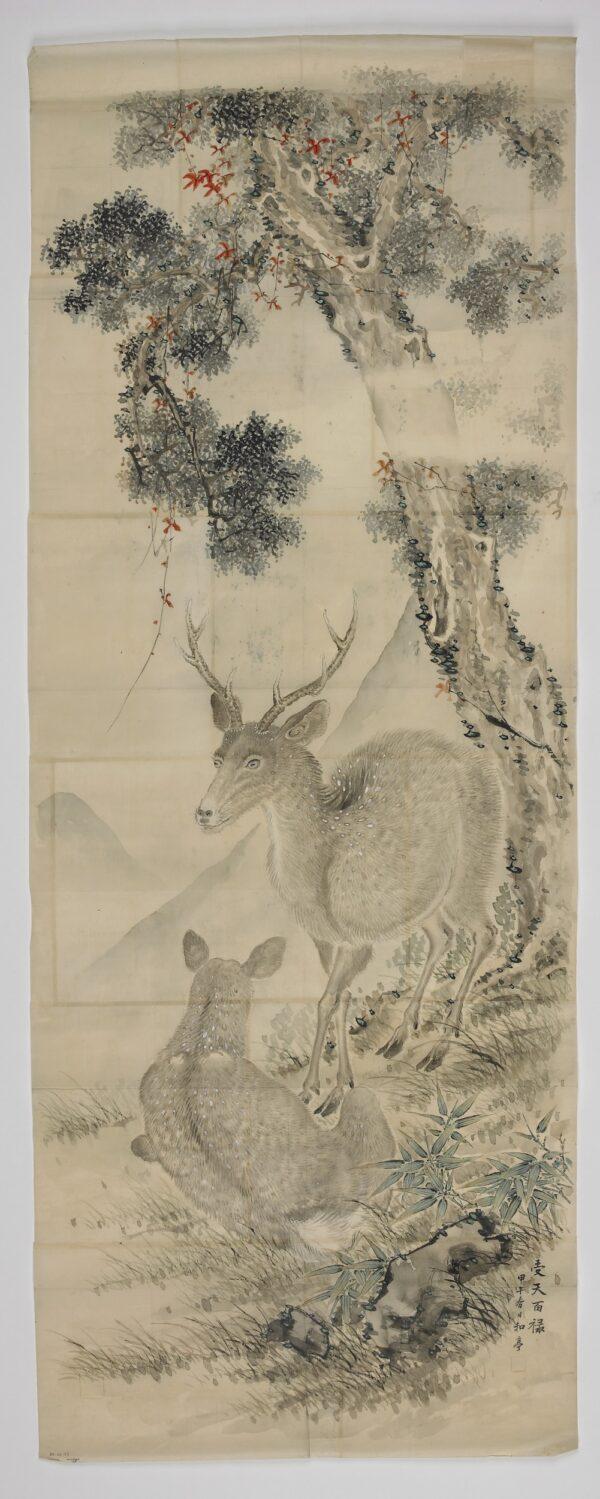 Deer Taki Katei