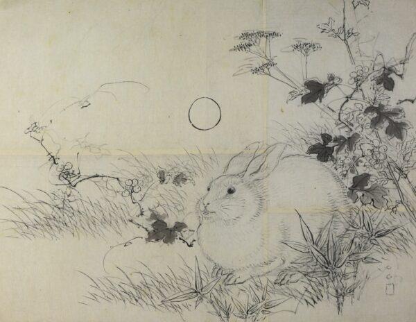 Rabbit by Taki Katei or Ishibashi Kazunori