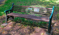Woman Spots Lonely Elderly Man on Park Bench, Gets Inspiration for 'Chat Benches' to Combat Social Isolation