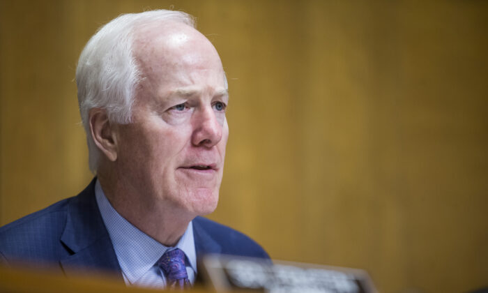 Sen. John Cornyn (R-Texas) on Capitol Hill in Washington on June 11, 2019. (Zach Gibson/Getty Images)