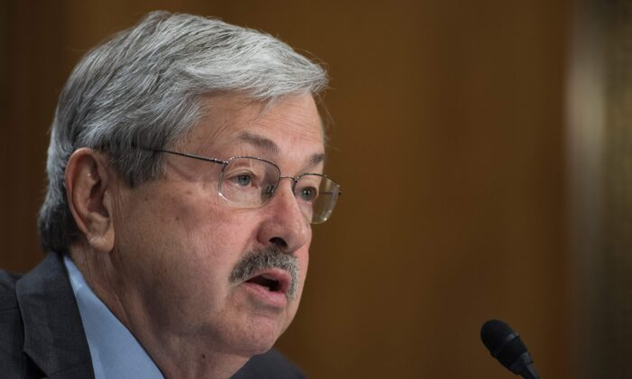 Terry Branstad testifies before the Senate Foreign Relations Committee on his nomination to be ambassador to China, on Capitol Hill on May 2, 2017. (Jim Watson/AFP via Getty Images)