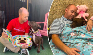 Dog Shelter Volunteer Moves Into Kennel With Lonely Dog Nobody Wants to Help Her Get Adopted