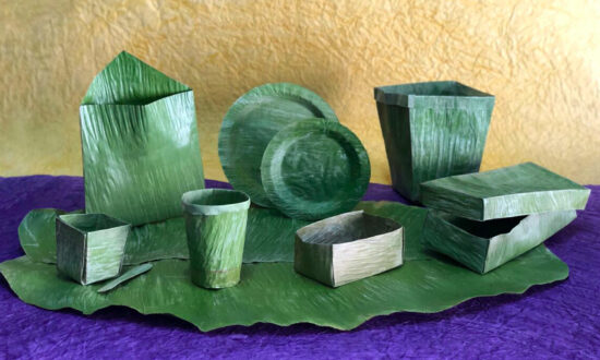 20-Year-Old Inventor in India Creates Biodegradable Plastic Substitute Made From Banana Leaves