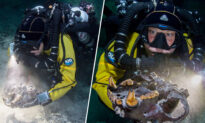 Bones of Ice Age Beasts From Over 13,000 Years Ago Found in Underwater Cave in Mexico