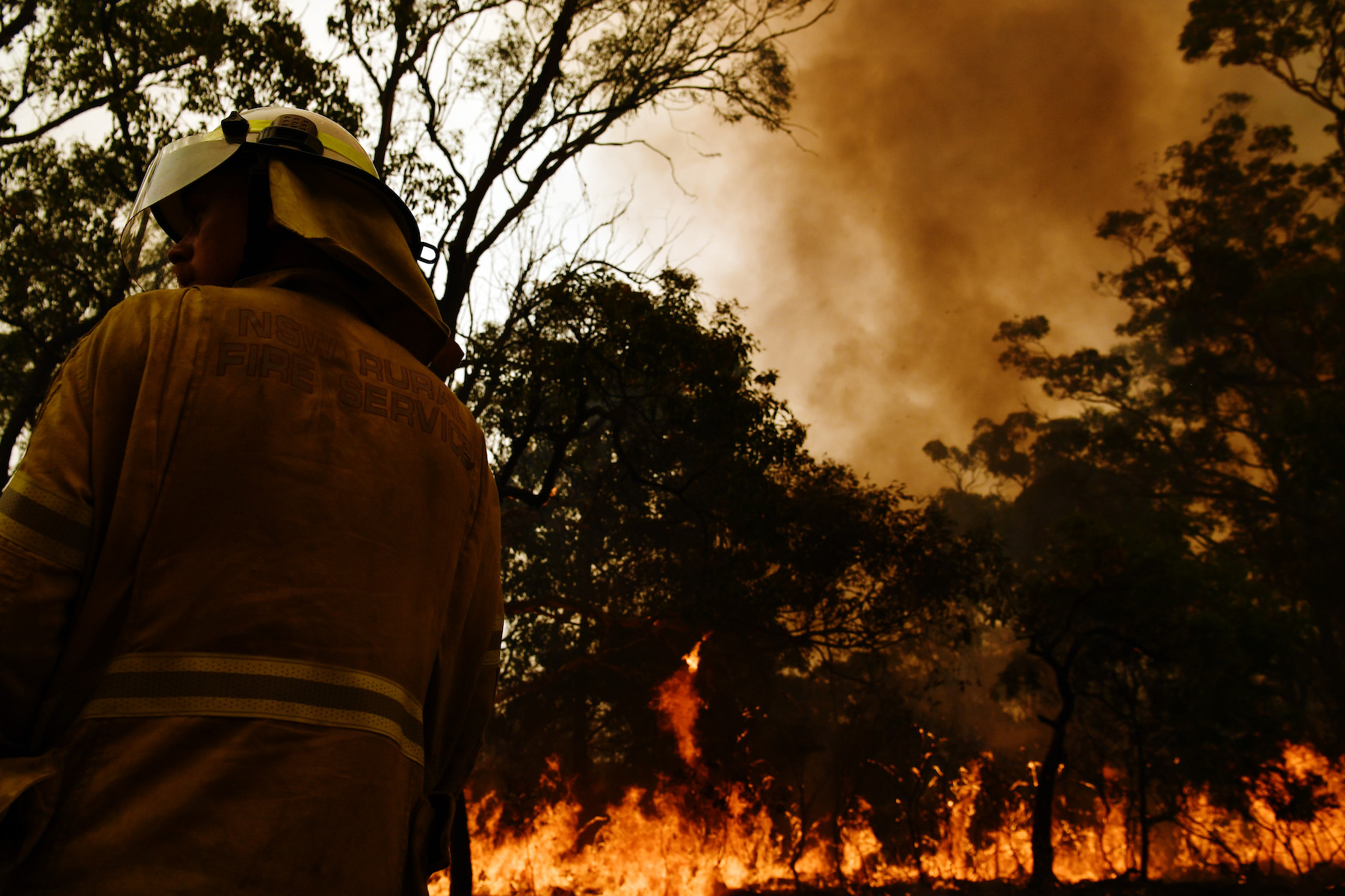 New South Wales On Severe Fire Alert As Temperatures Rise
