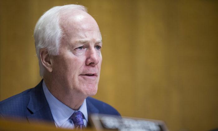 Sen. John Cornyn (R-Texas) in Washington in a file photograph. (Zach Gibson/Getty Images)