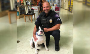 Police 'K9 for a Day' Program Takes Shelter Dogs Along on Patrol Rides and Helps Them Get Adopted