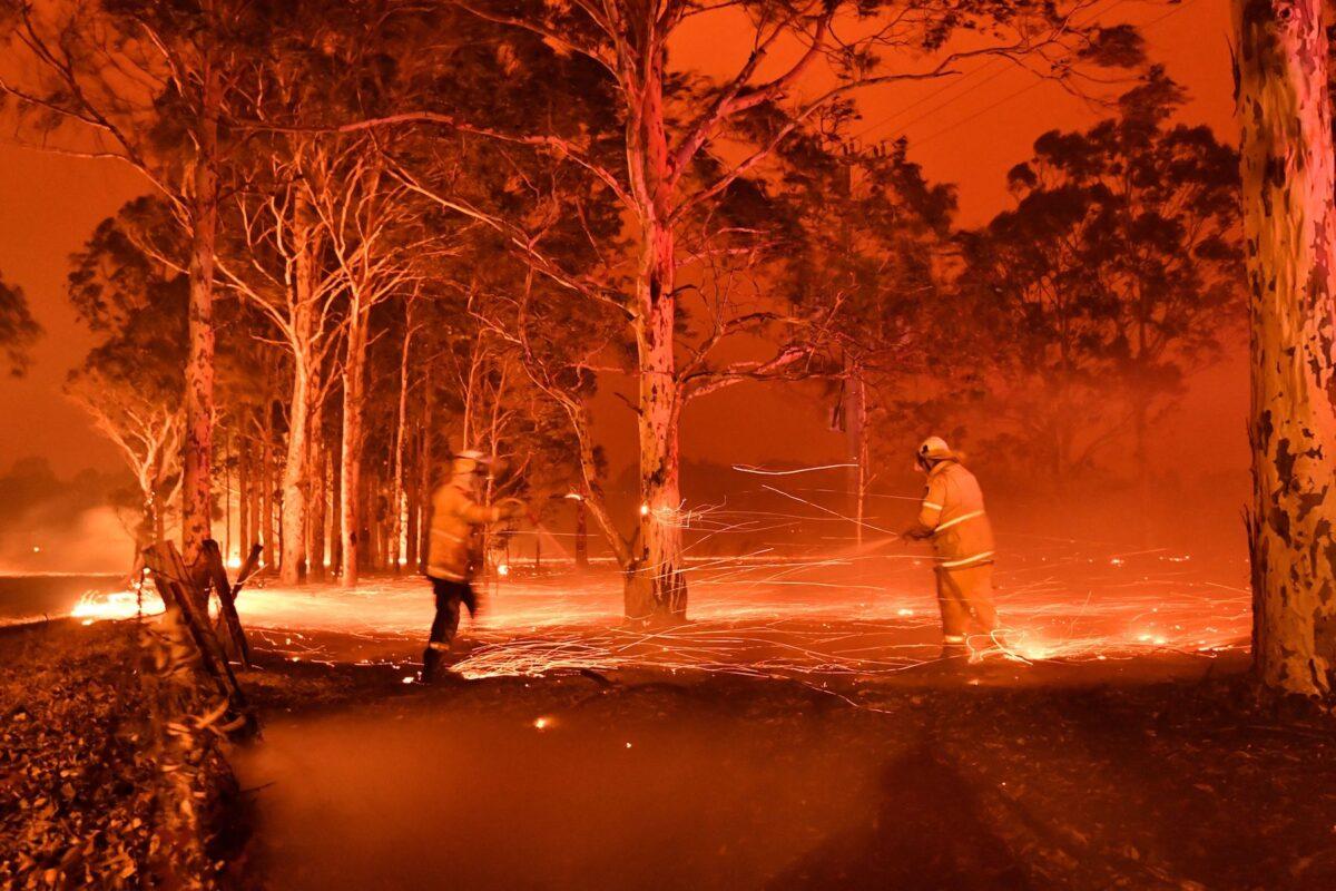 australia nsw nowra bushfires