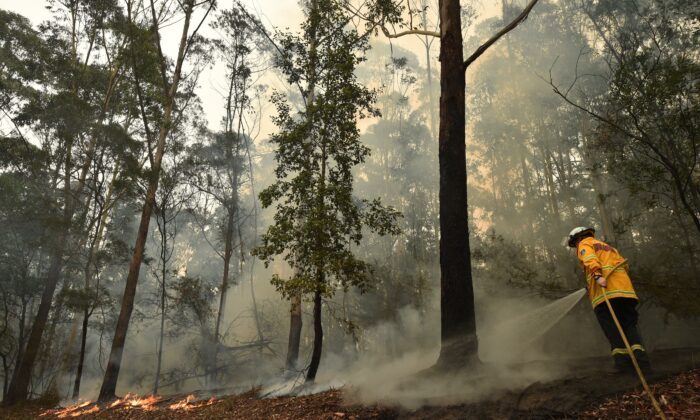 A firefighter tackles a bushfire south of Nowra on Jan. 5, 2020. (Peter Parks/AFP via Getty Images)