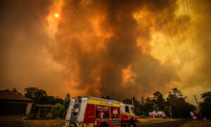 Confusing Bushfire Warnings 'Caused Panic'