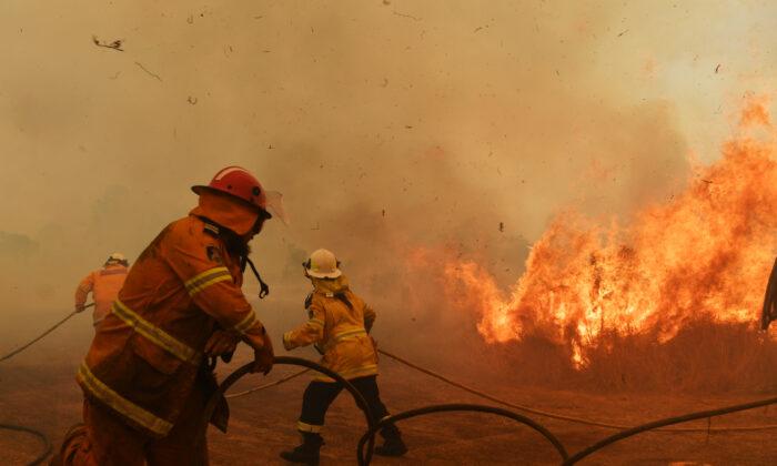 RFS Firefighters battle a spot fire on November 13, 2019 in Hillville, Australia. (Sam Mooy/Getty Images)