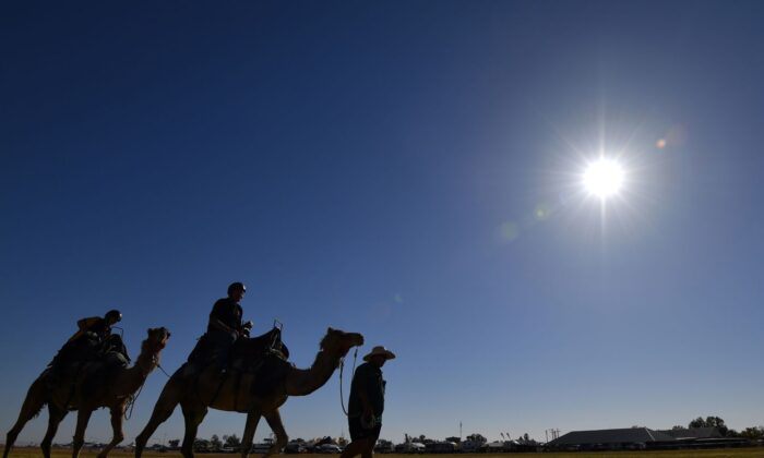 Spectators enjoy a camel ride prior to the day's Birdsville Races in the Queensland town of Birdsville on Sept. 1, 2018. The annual Birdsville races in Outback Queensland attracts thousands of people to the remote town and is a major source of tourist revenue. (Saeed Khan/AFP via Getty Images)