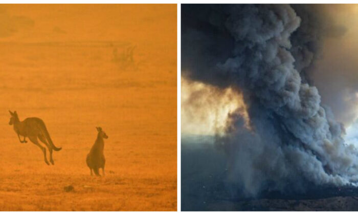 A kangaroo jumps in a field amidst smoke from a bushfire in Snowy Valley on the outskirts of Cooma on Jan. 4, 2020. And massive smoke rises from wildfires burning in East Gippsland, Victoria. (SAEED KHAN/AFP via Getty Images; Dale Appleton/DELWP via AP)