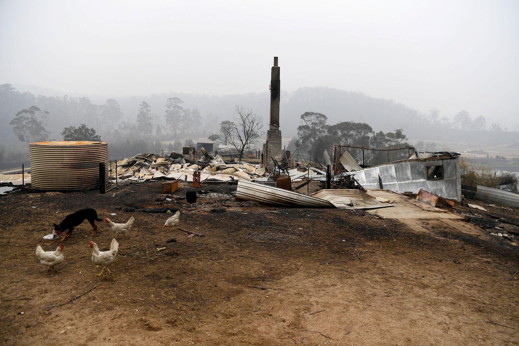 Bushfires in Kiah, Australia