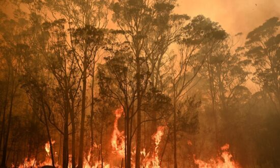 Canadian Firefighters Expect to Use Tailored Tactics to Battle Australia Blazes