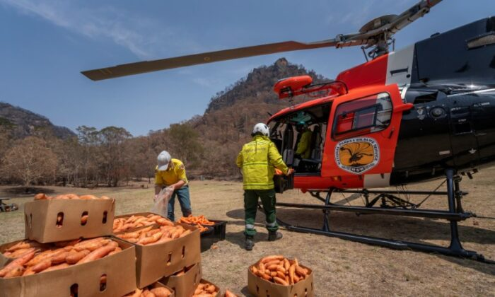 NSW's National Parks and Wildlife Service staff prepare to air-drop supplies in wildfire-stricken areas, in Newnes, Wollemi National Park, Australia, on Jan. 10, 2020. (NSW DPIE Environment, Energy and Science/Handout via Reuters)