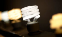 Shedding Light on the Bulb Controversy