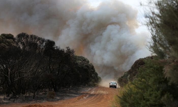 A plume of bushfire smoke rises above Mount Taylor Road bordering local farm land on Jan. 11, 2020 in Karatta, Australia. (Lisa Maree Williams/Getty Images)