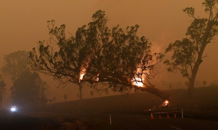 A burning gum tree is felled to stop it from falling on a car in Corbago, as bushfires continue in New South Wales, Australia, on Jan. 5, 2020. (Reuters/Tracey Nearmy)
