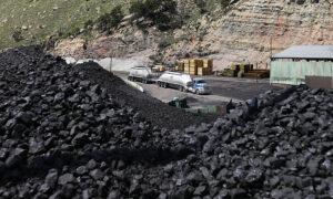 Coastal City Moves to Ban Coal Exports, Cutting Off a Major Port
