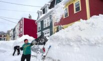 Armed Forces, Neighbours Pitch in to Help Snow-Bound Newfoundlanders Dig Out