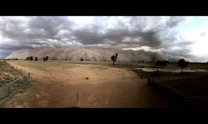 A huge dust storm sweeps across Collie in the Central West of New South Wales, Australia, on Jan. 19, 2020. (Reuters)