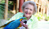 'Golden Girls' Actress Betty White Turns 98–and Here Are 8 Times When She Said It Best