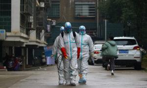 Coronavirus Destroying China's Global Supply Chains
