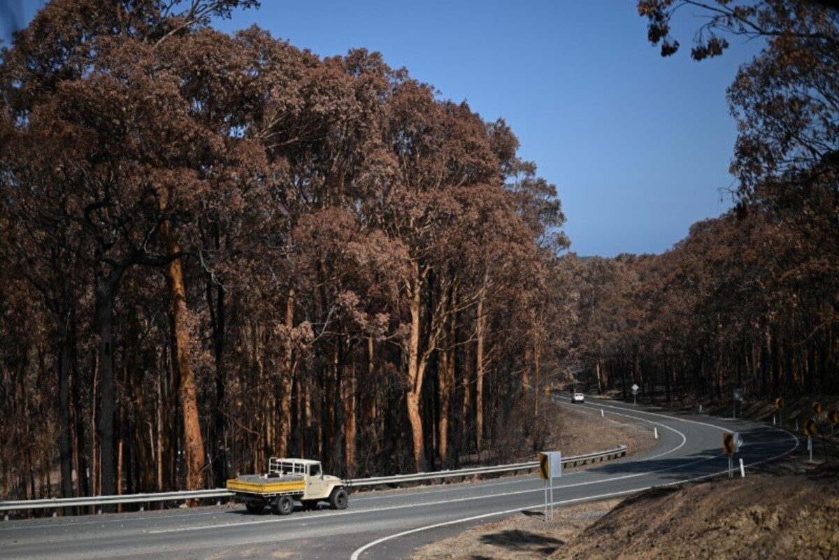 Australia Battles New Bushfire Threat as Smoke Cloaks...