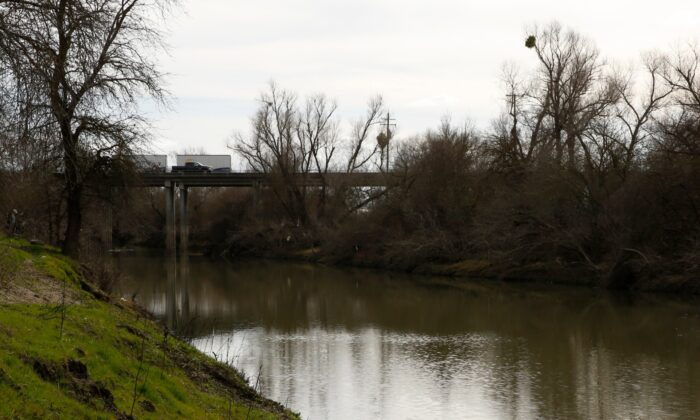 Part of the slough where the body of infant Nikko Lee Perez was discovered in Yolo County in 2007, near Woodland, Calif., on Jan. 27, 2020. (Rich Pedroncelli/AP Photo)