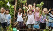 School Gardens Reconnect Kids With Food