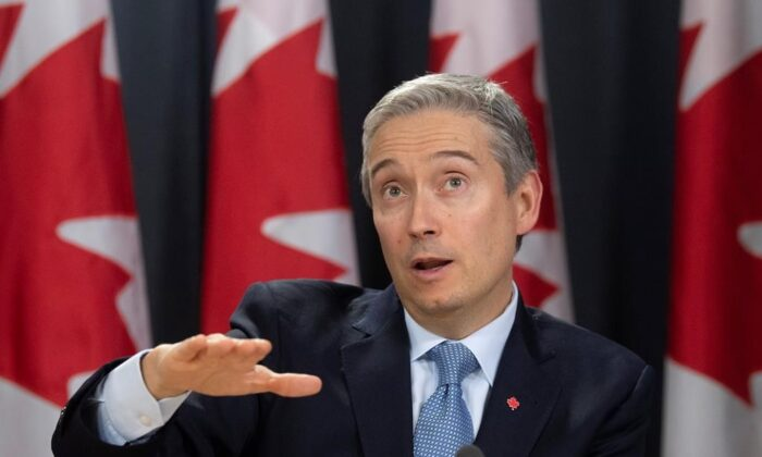 Foreign Affairs Minister Francois-Philippe Champagne speaks at a news conference  in Ottawa on Feb. 3, 2020. (The Canadian Press/Adrian Wyld)