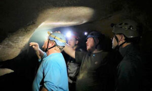 Paleontologists Unearth 330-Million-Year-Old Shark's Head Inside Mammoth Cave Park, Kentucky