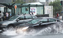 Heavy Rain Drowns out NSW Fires, Official Says City Roads May Flood