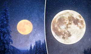 Look for the Super 'Snow Moon' to Light Up the Winter Sky This Weekend–Here's What It Means