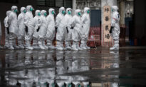 China Reports First H5N6 Bird Flu on Poultry Farm in Sichuan