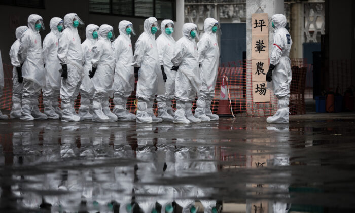 Volunteers from the Civil Aid Service wearing protective clothing take part in a chicken cull demonstration as part of an emergency response exercise in Hong Kong on May 21, 2017. (Dale de la Rey/AFP via Getty Images)