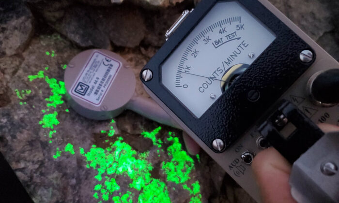 A sample from a critical mineral deposit in San Bernardino County, Calif. The uranium glows under blacklight, and a gieger counter measures its radiation. (Courtesy of Sundown Resources)
